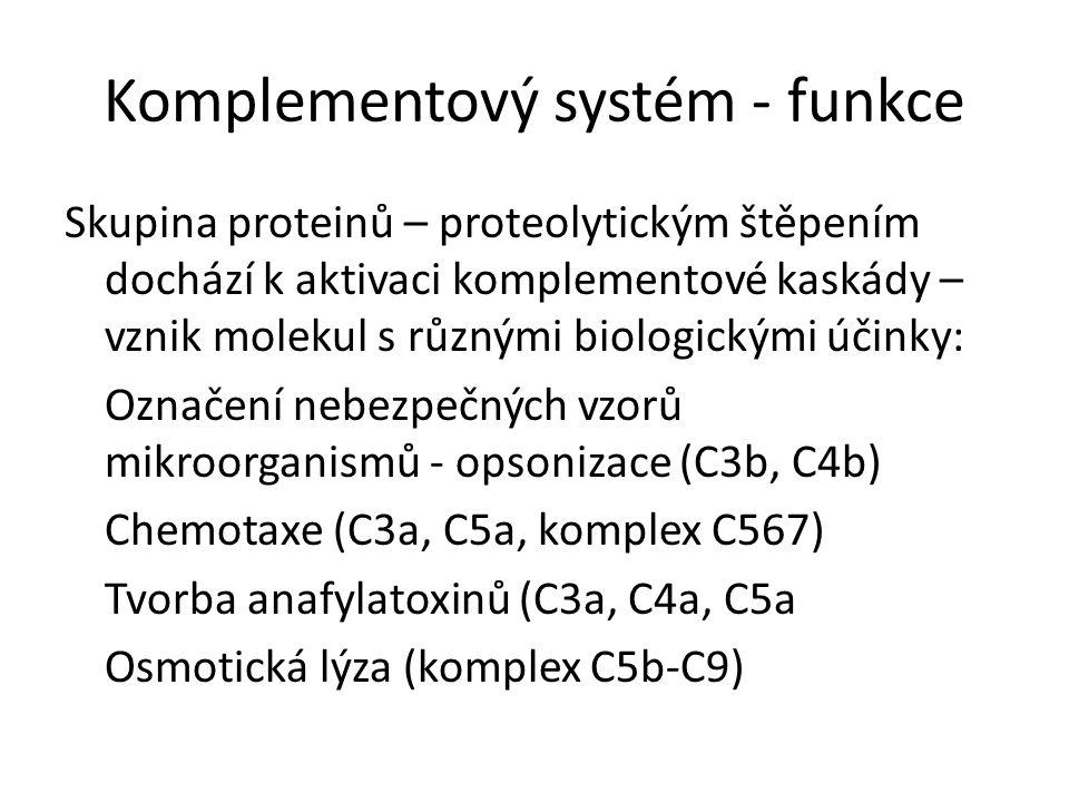 Komplementový systém - funkce Skupina proteinů – proteolytickým štěpením dochází k aktivaci komplementové kaskády – vznik molekul s různými biologickými účinky: Označení nebezpečných vzorů mikroorganismů - opsonizace (C3b, C4b) Chemotaxe (C3a, C5a, komplex C567) Tvorba anafylatoxinů (C3a, C4a, C5a Osmotická lýza (komplex C5b-C9)