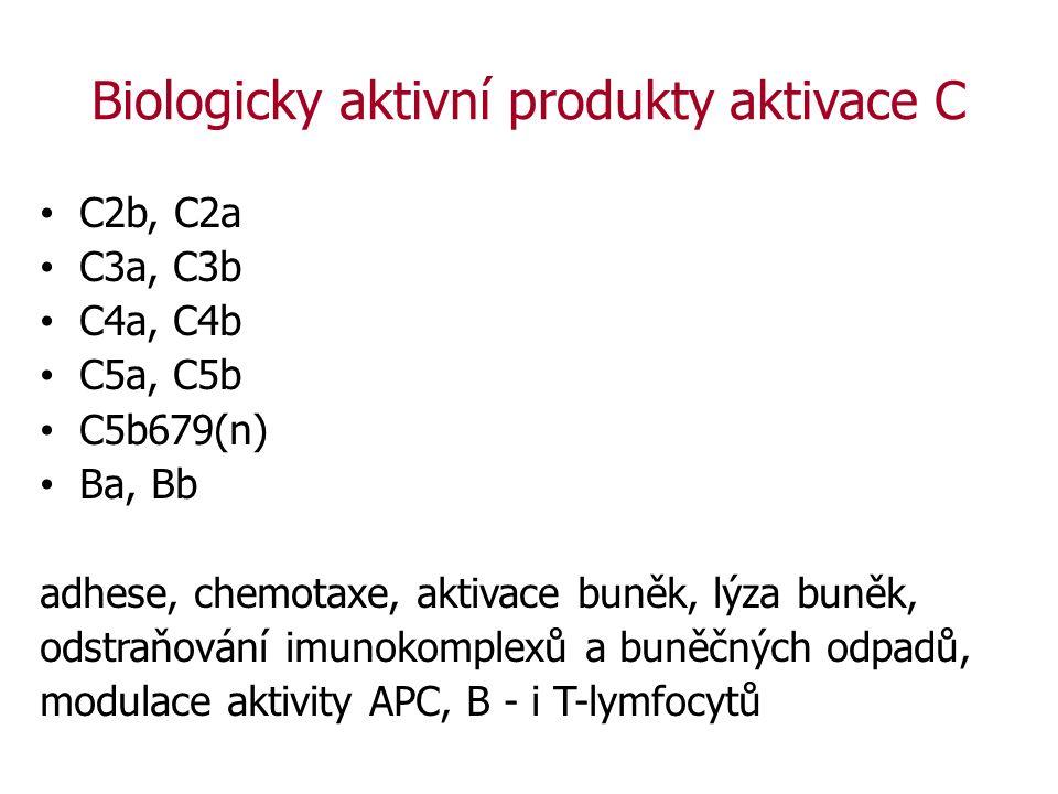Biologicky aktivní produkty aktivace C C2b, C2a C3a, C3b C4a, C4b C5a, C5b C5b679(n) Ba, Bb adhese, chemotaxe, aktivace buněk, lýza buněk, odstraňování imunokomplexů a buněčných odpadů, modulace aktivity APC, B - i T-lymfocytů