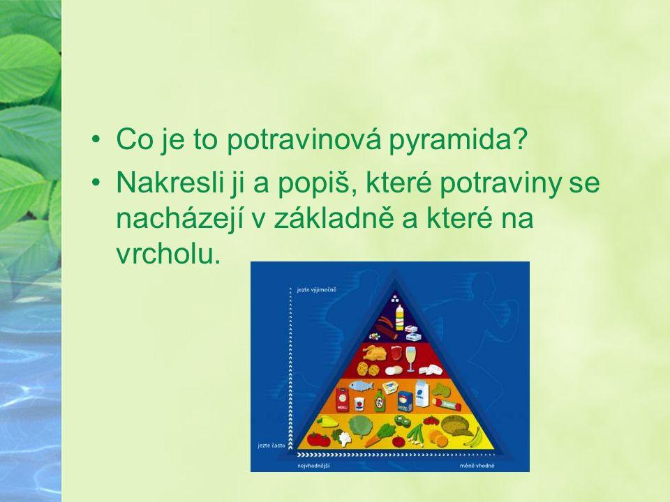 Co je to potravinová pyramida.