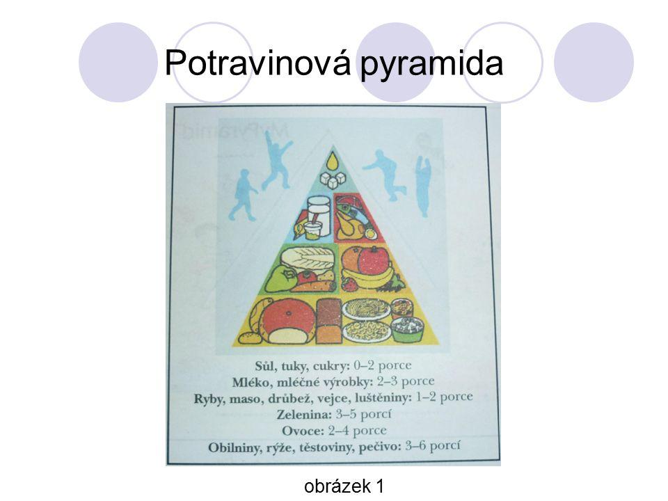 Potravinová pyramida obrázek 1