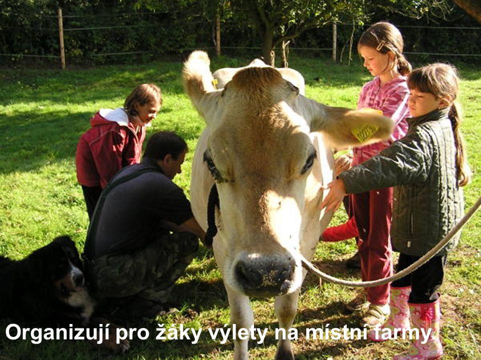 Organizují pro žáky výlety na místní farmy.