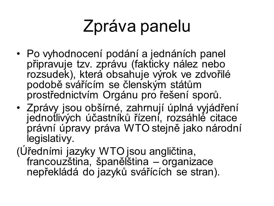 Zpráva panelu Po vyhodnocení podání a jednáních panel připravuje tzv.