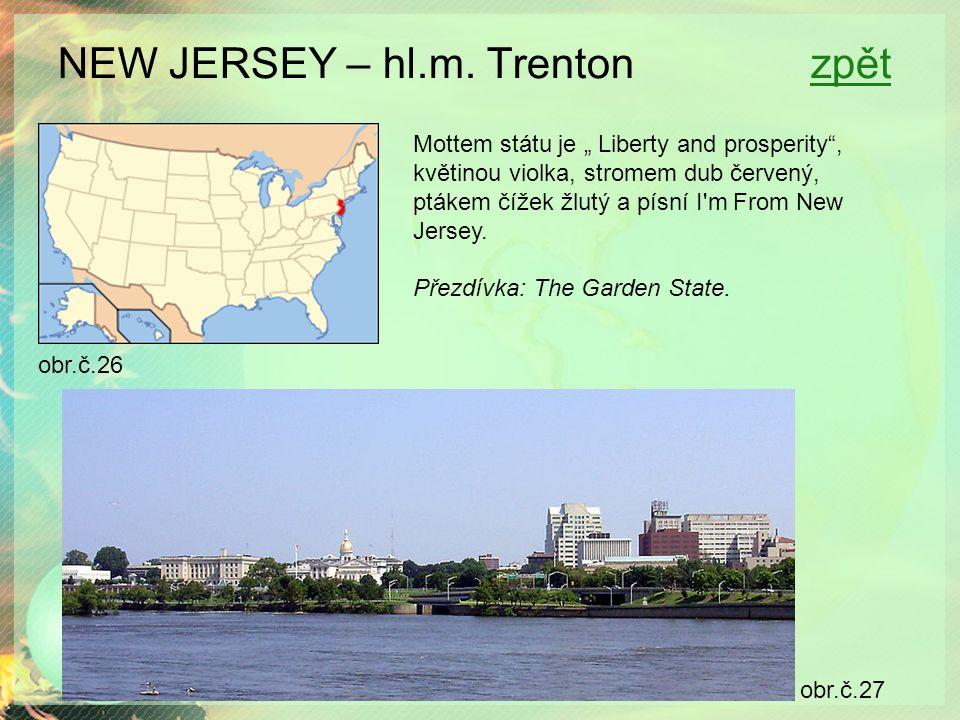 """NEW JERSEY – hl.m. Trenton zpětzpět obr.č.26 obr.č.27 Mottem státu je """" Liberty and prosperity"""", květinou violka, stromem dub červený, ptákem čížek žl"""