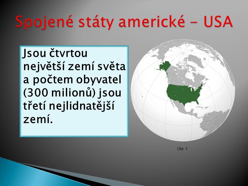 Jsou čtvrtou největší zemí světa a počtem obyvatel (300 milionů) jsou třetí nejlidnatější zemí.