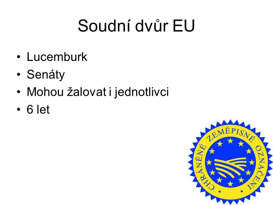 Soudní dvůr EU Lucemburk Senáty Mohou žalovat i jednotlivci 6 let