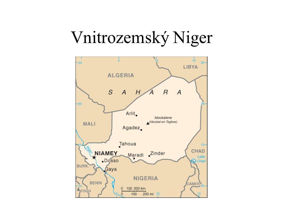 Vnitrozemský Niger