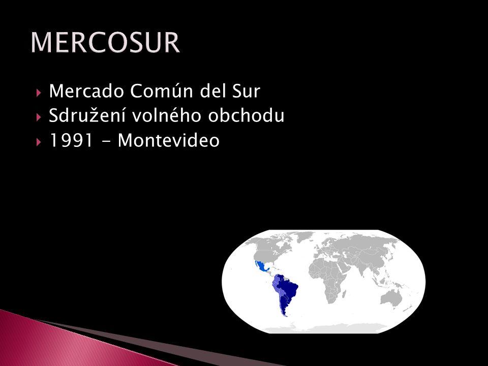  Mercado Común del Sur  Sdružení volného obchodu  1991 - Montevideo