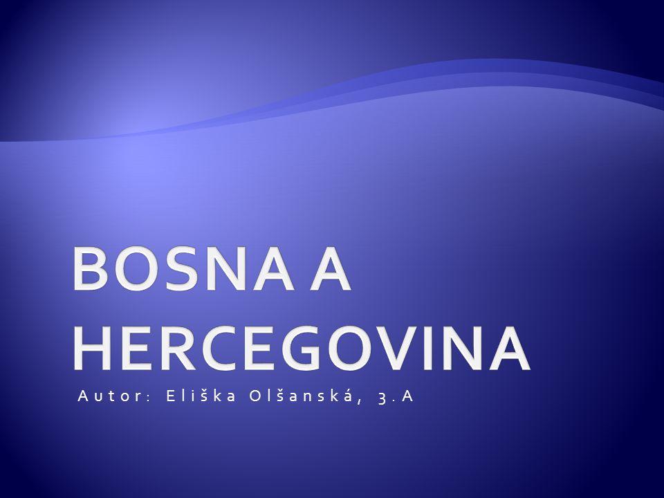 Autor: Eliška Olšanská, 3.A