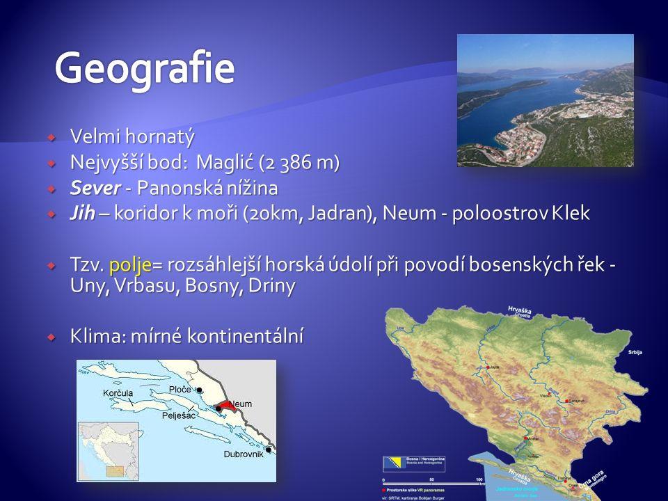  Velmi hornatý  Nejvyšší bod: Maglić (2 386 m)  Sever - Panonská nížina  Jih – koridor k moři (20km, Jadran), Neum - poloostrov Klek  Tzv.