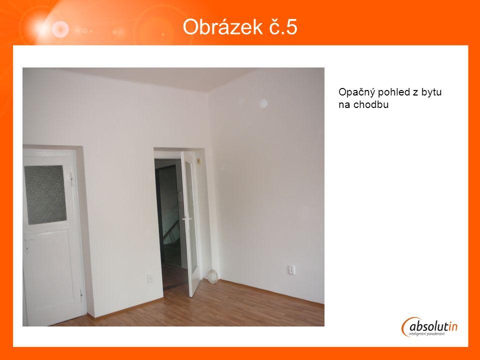 Obrázek č.5 Opačný pohled z bytu na chodbu