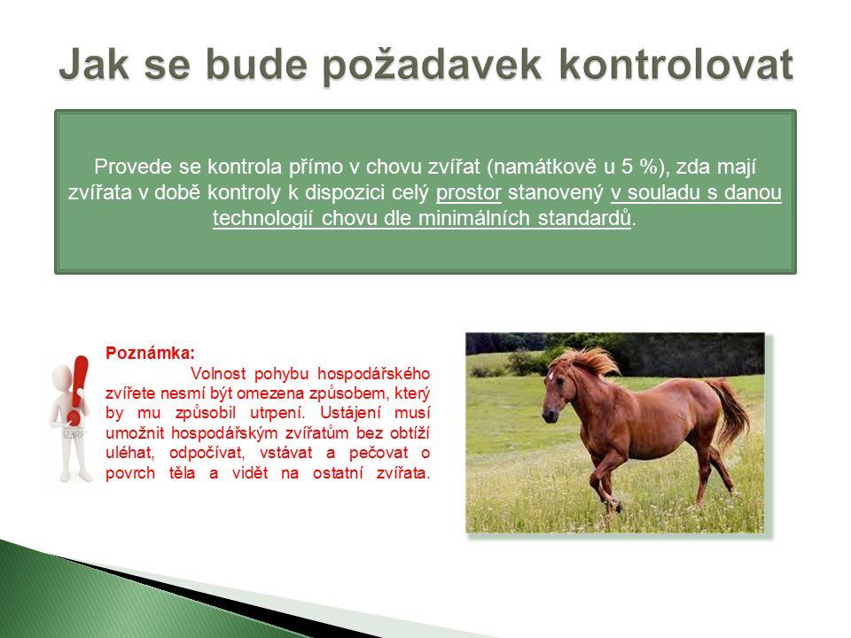 Provede se kontrola přímo v chovu zvířat (namátkově u 5 %), zda mají zvířata v době kontroly k dispozici celý prostor stanovený v souladu s danou technologií chovu dle minimálních standardů.