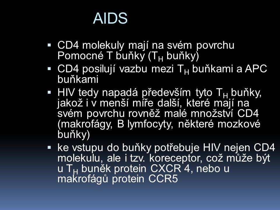 AIDS  CD4 molekuly mají na svém povrchu Pomocné T buňky (T H buňky)  CD4 posilují vazbu mezi T H buňkami a APC buňkami  HIV tedy napadá především tyto T H buňky, jakož i v menší míře další, které mají na svém povrchu rovněž malé množství CD4 (makrofágy, B lymfocyty, některé mozkové buňky)  ke vstupu do buňky potřebuje HIV nejen CD4 molekulu, ale i tzv.
