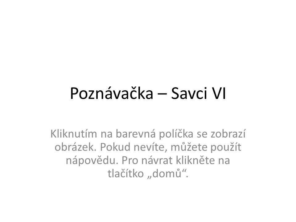 Poznávačka – Savci VI Kliknutím na barevná políčka se zobrazí obrázek.