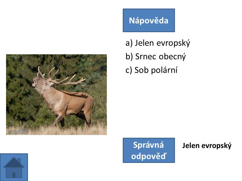 a) Jelen evropský b) Srnec obecný c) Sob polární Nápověda Správná odpověď Jelen evropský