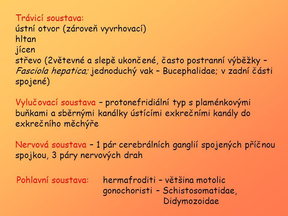 Pohlavní soustava:hermafroditi – většina motolic gonochoristi – Schistosomatidae, Didymozoidae Trávicí soustava: ústní otvor (zároveň vyvrhovací) hlta