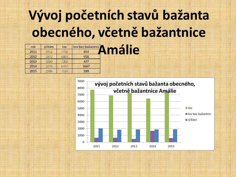 Vývoj početních stavů bažanta obecného, včetně bažantnice Amálie