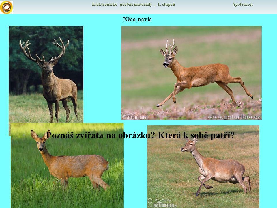 Elektronické učební materiály – 1.stupeň Společnost Něco navíc Poznáš zvířata na obrázku.