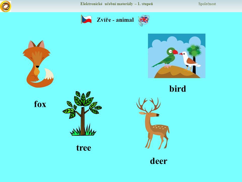 Elektronické učební materiály – 1. stupeň Společnost Zvíře - animal fox bird tree deer