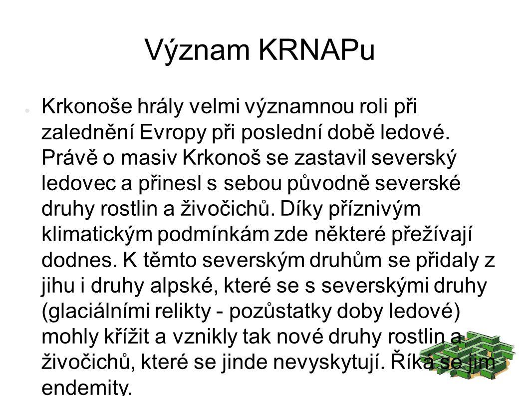 Význam KRNAPu ● Krkonoše hrály velmi významnou roli při zalednění Evropy při poslední době ledové.