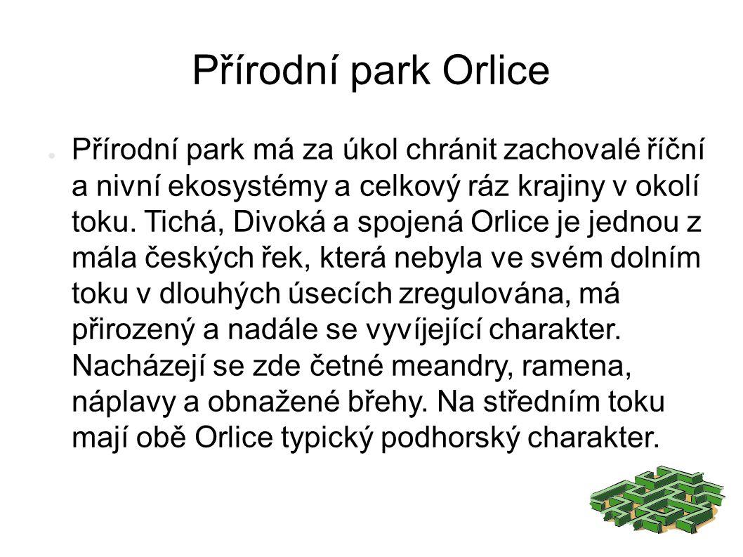 Přírodní park Orlice ● Přírodní park má za úkol chránit zachovalé říční a nivní ekosystémy a celkový ráz krajiny v okolí toku.