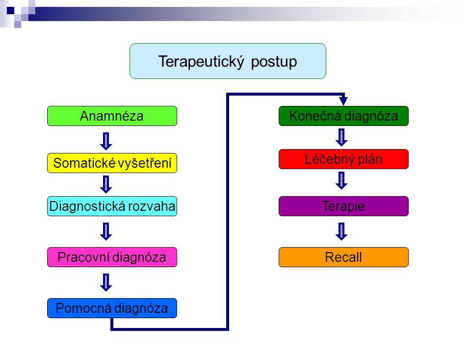 Anamnéza Somatické vyšetření Diagnostická rozvaha Pracovní diagnóza Pomocná diagnóza Konečná diagnóza Léčebný plán Terapie Recall Terapeutický postup