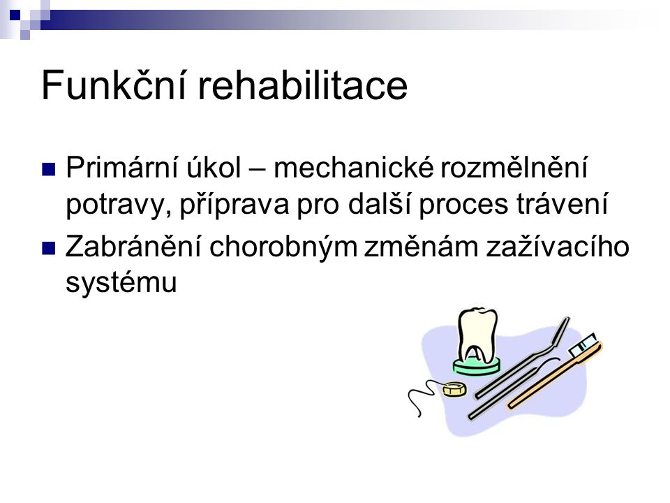 Funkční rehabilitace Primární úkol – mechanické rozmělnění potravy, příprava pro další proces trávení Zabránění chorobným změnám zažívacího systému
