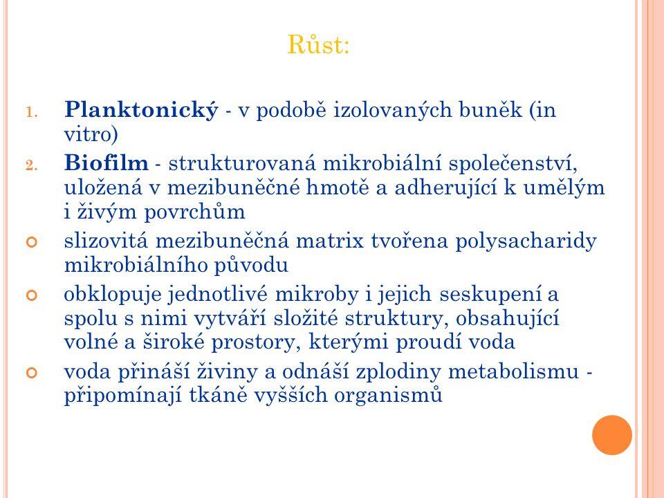 Růst: 1. Planktonický - v podobě izolovaných buněk (in vitro) 2.