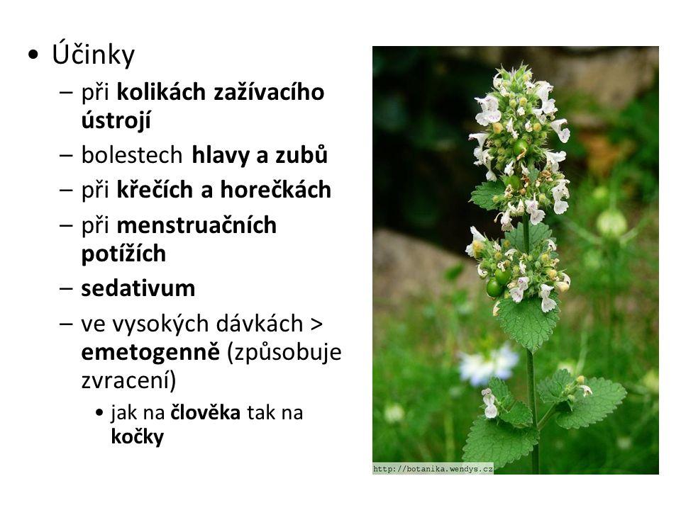 Lilkovité Lilkovité (Solonaceae) jednoleté, dvouleté nebo vytrvalé byliny, polokeře nebo keře.