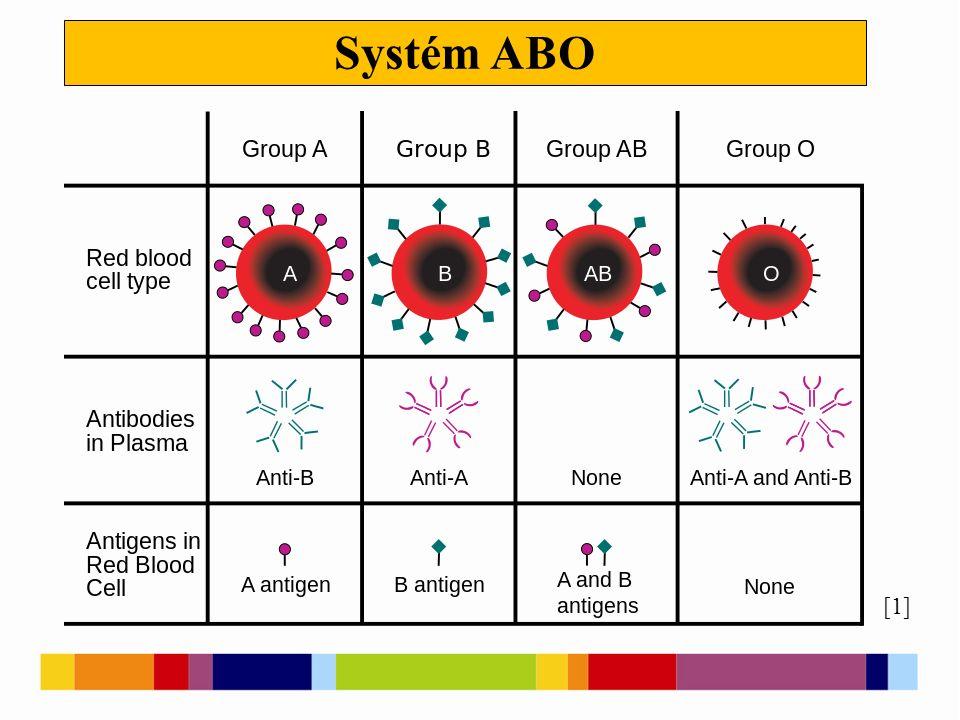 Systém ABO [1]