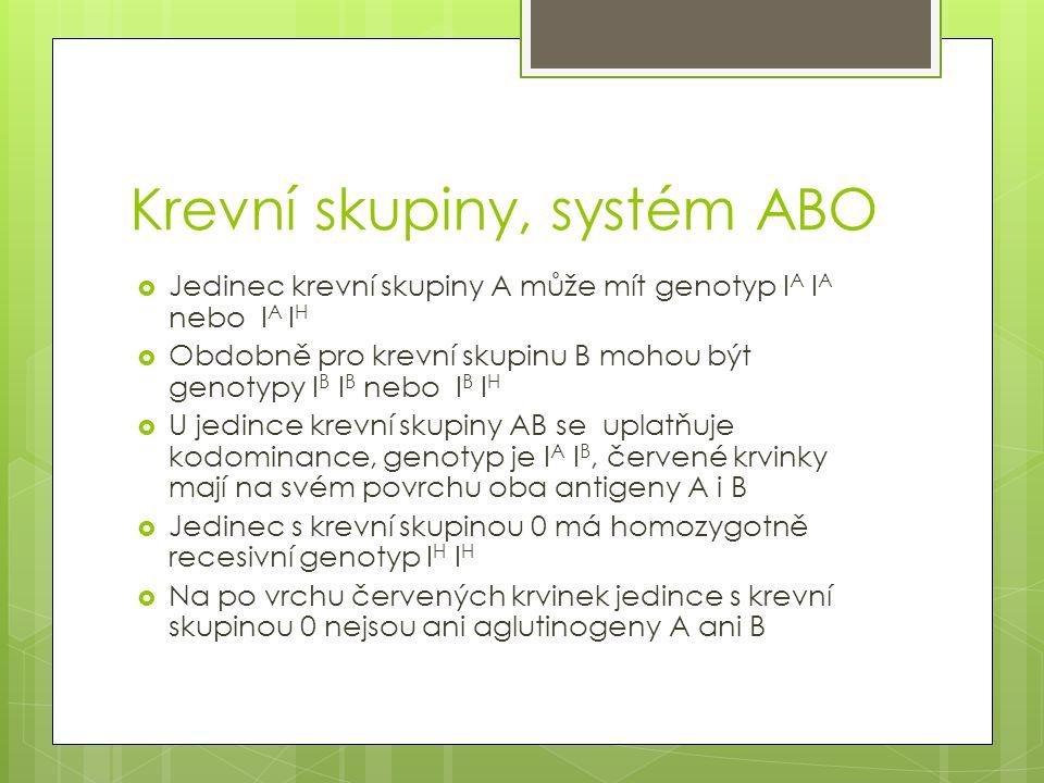 Krevní skupiny, systém ABO  Jedinec krevní skupiny A může mít genotyp I A I A nebo I A I H  Obdobně pro krevní skupinu B mohou být genotypy I B I B