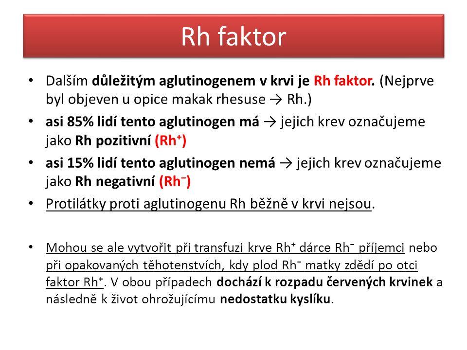 Rh faktor Dalším důležitým aglutinogenem v krvi je Rh faktor.