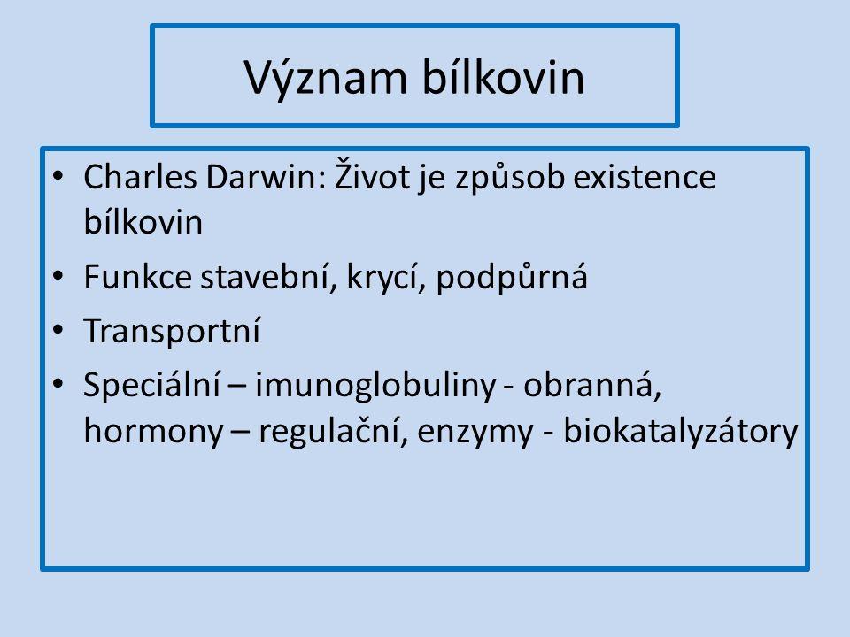 Význam bílkovin Charles Darwin: Život je způsob existence bílkovin Funkce stavební, krycí, podpůrná Transportní Speciální – imunoglobuliny - obranná, hormony – regulační, enzymy - biokatalyzátory