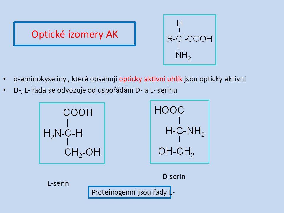 Optické izomery AK α-aminokyseliny, které obsahují opticky aktivní uhlík jsou opticky aktivní D-, L- řada se odvozuje od uspořádání D- a L- serinu L-serin D-serin Proteinogenní jsou řady L-
