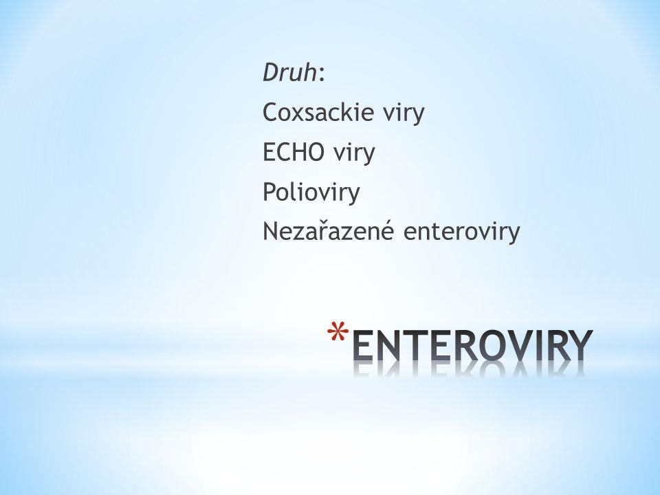 * Vlastnosti podobné jako Coxsackie viry * Přenos fekálně – orální cestou * Maximum onemocnění červen – říjen * Inkubační doba 3-7 dní