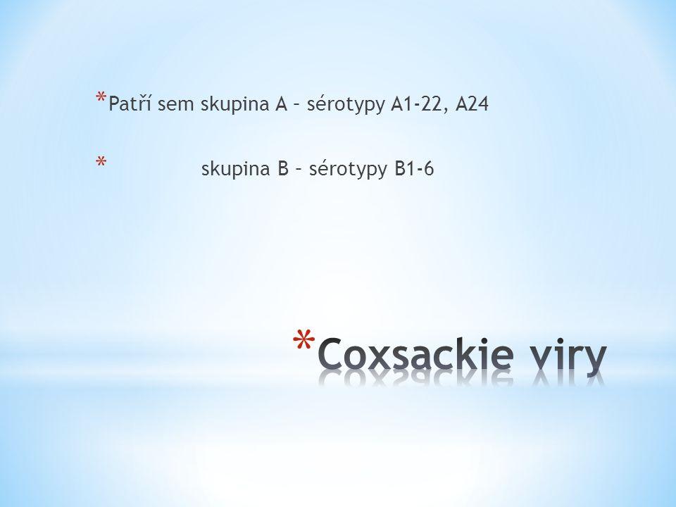 * Nemají společný skupinový antigen * Patogeneze je stejná jako u Coxsackie virů