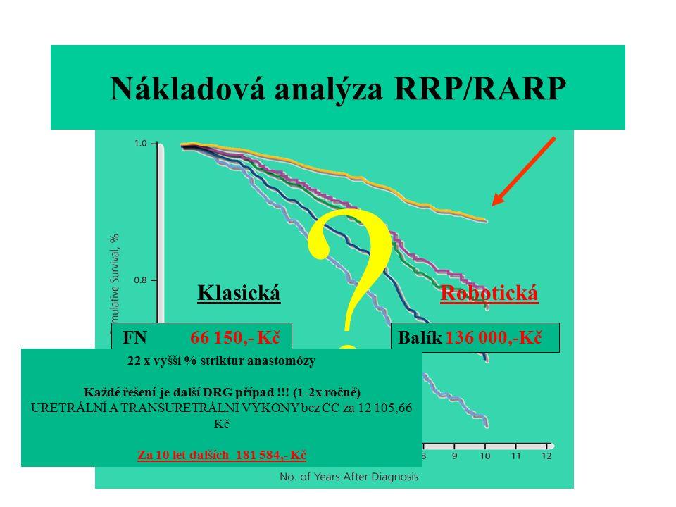 Nákladová analýza RRP/RARP .