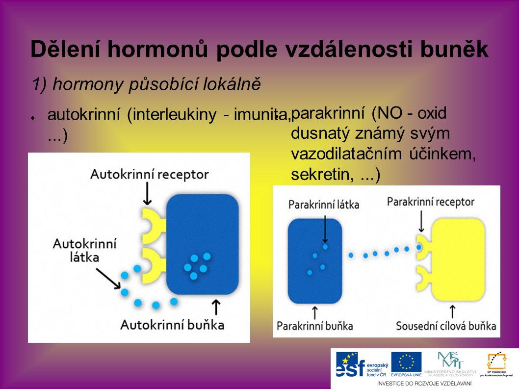 Dělení hormonů podle vzdálenosti buněk 1) hormony působící lokálně ● autokrinní (interleukiny - imunita,...) ● parakrinní (NO - oxid dusnatý známý svým vazodilatačním účinkem, sekretin,...)