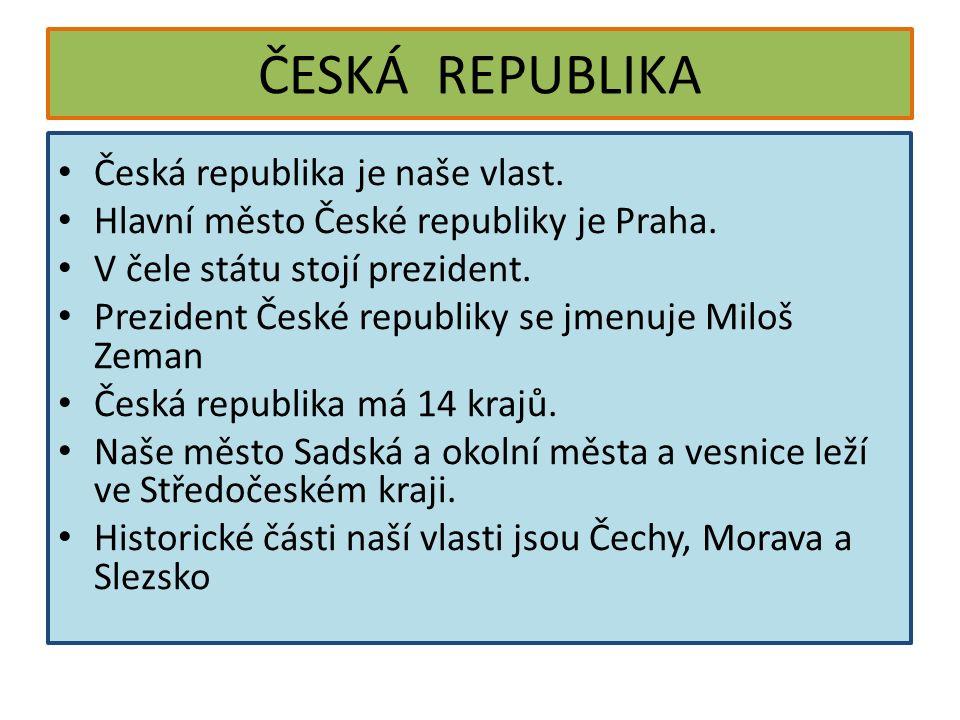 ČESKÁ REPUBLIKA Česká republika je naše vlast. Hlavní město České republiky je Praha. V čele státu stojí prezident. Prezident České republiky se jmenu