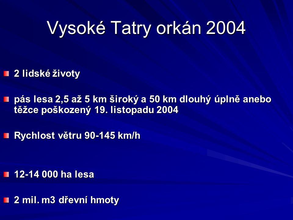 Vysoké Tatry orkán 2004 2 lidské životy pás lesa 2,5 až 5 km široký a 50 km dlouhý úplně anebo těžce poškozený 19.