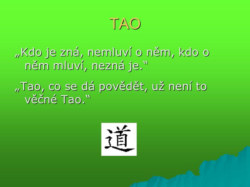 """Bezejmenné TAO  nedefinovatelný, konkrétní běh světa  nejvyšší realita - absolutno – ne abstraktní, ale konkrétní (ale ne materialistické)  rytmus přírody  hnací síla přírody  lůno – z nějž vše pochází a vše se do něj vrací  neuchopitelný prazáklad světa  míra všech měr: """"člověk je spravován mírou země, země mírou nebes, nebesa mírou tao a tao mírou sebe sama """"člověk je spravován mírou země, země mírou nebes, nebesa mírou tao a tao mírou sebe sama"""