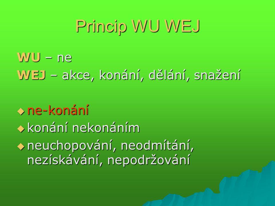 Princip WU WEJ WU – ne WEJ – akce, konání, dělání, snažení  ne-konání  konání nekonáním  neuchopování, neodmítání, nezískávání, nepodržování