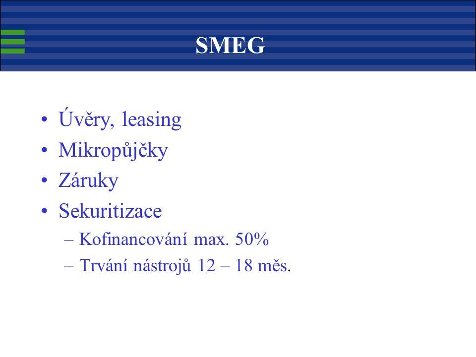 Úvěry, leasing Mikropůjčky Záruky Sekuritizace –Kofinancování max.