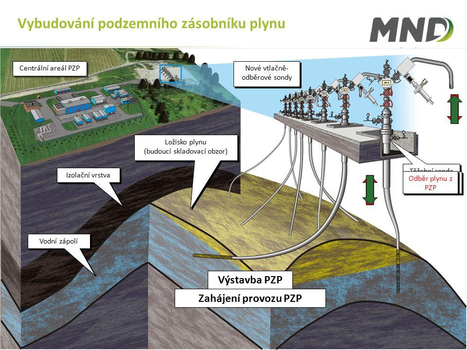Member of KKCG Group |7 Finanční ukazatele 2010 Vybudování podzemního zásobníku plynu Izolační vrstva Ložisko plynu (budoucí skladovací obzor) Ložisko