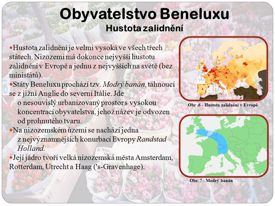 Obyvatelstvo Beneluxu Hustota zalidn ě ní Hustota zalidnění je velmi vysoká ve všech třech státech. Nizozemí má dokonce nejvyšší hustotu zalidnění v E