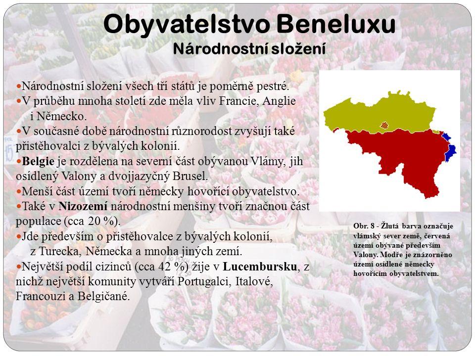 Obyvatelstvo Beneluxu Národnostní slo ž ení Národnostní složení všech tří států je poměrně pestré. V průběhu mnoha století zde měla vliv Francie, Angl