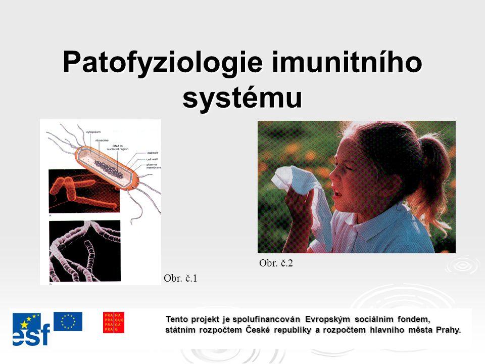 Patofyziologie imunitního systému Obr. č.1 Obr.