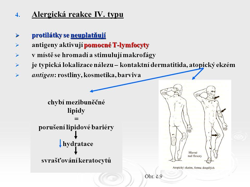 4. Alergická reakce IV.