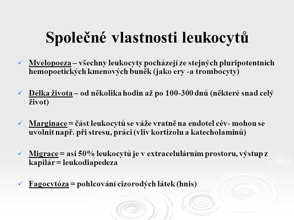 Společné vlastnosti leukocytů Myelopoeza – všechny leukocyty pocházejí ze stejných pluripotentních hemopoetických kmenových buněk (jako ery -a trombocyty) Myelopoeza – všechny leukocyty pocházejí ze stejných pluripotentních hemopoetických kmenových buněk (jako ery -a trombocyty) Délka života – od několika hodin až po 100-300 dnů (některé snad celý život) Délka života – od několika hodin až po 100-300 dnů (některé snad celý život) Marginace = část leukocytů se váže vratně na endotel cév- mohou se uvolnit např.