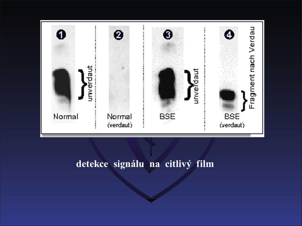 detekce signálu na citlivý film