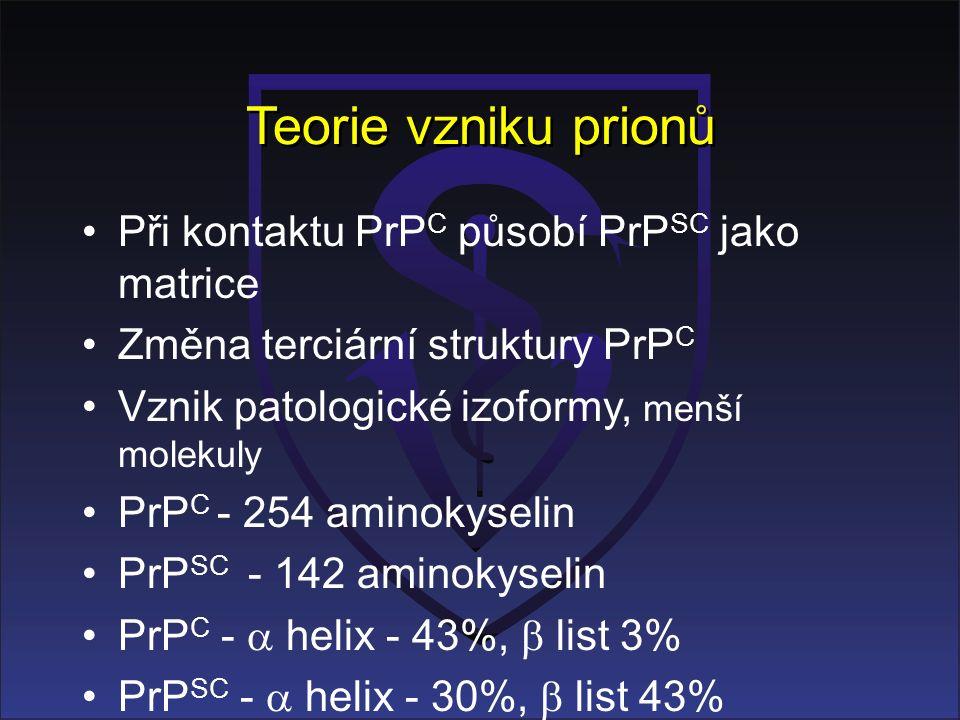 Teorie vzniku prionů Při kontaktu PrP C působí PrP SC jako matrice Změna terciární struktury PrP C Vznik patologické izoformy, menší molekuly PrP C - 254 aminokyselin PrP SC - 142 aminokyselin PrP C -  helix - 43%,  list 3% PrP SC -  helix - 30%,  list 43%